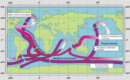Именно глобальный конвейер отвечает за климатическую изменчивость. Источник: Институт океанологии РАН
