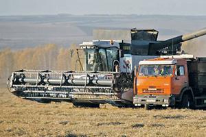 Цены на продовольствие растут в РФ вне зависимости от видов на урожай.Фото Reuters
