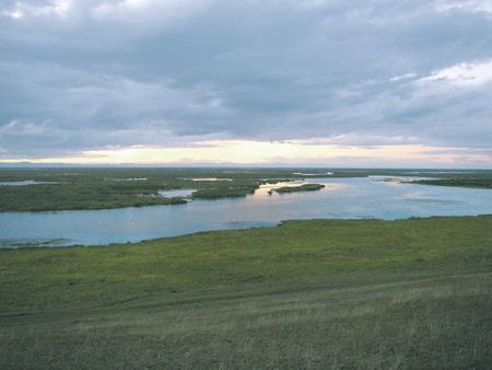 На монгольском участке реки Селенги давно хотят построить крупные гидроэлектростанции. Фото Петера Юхаса